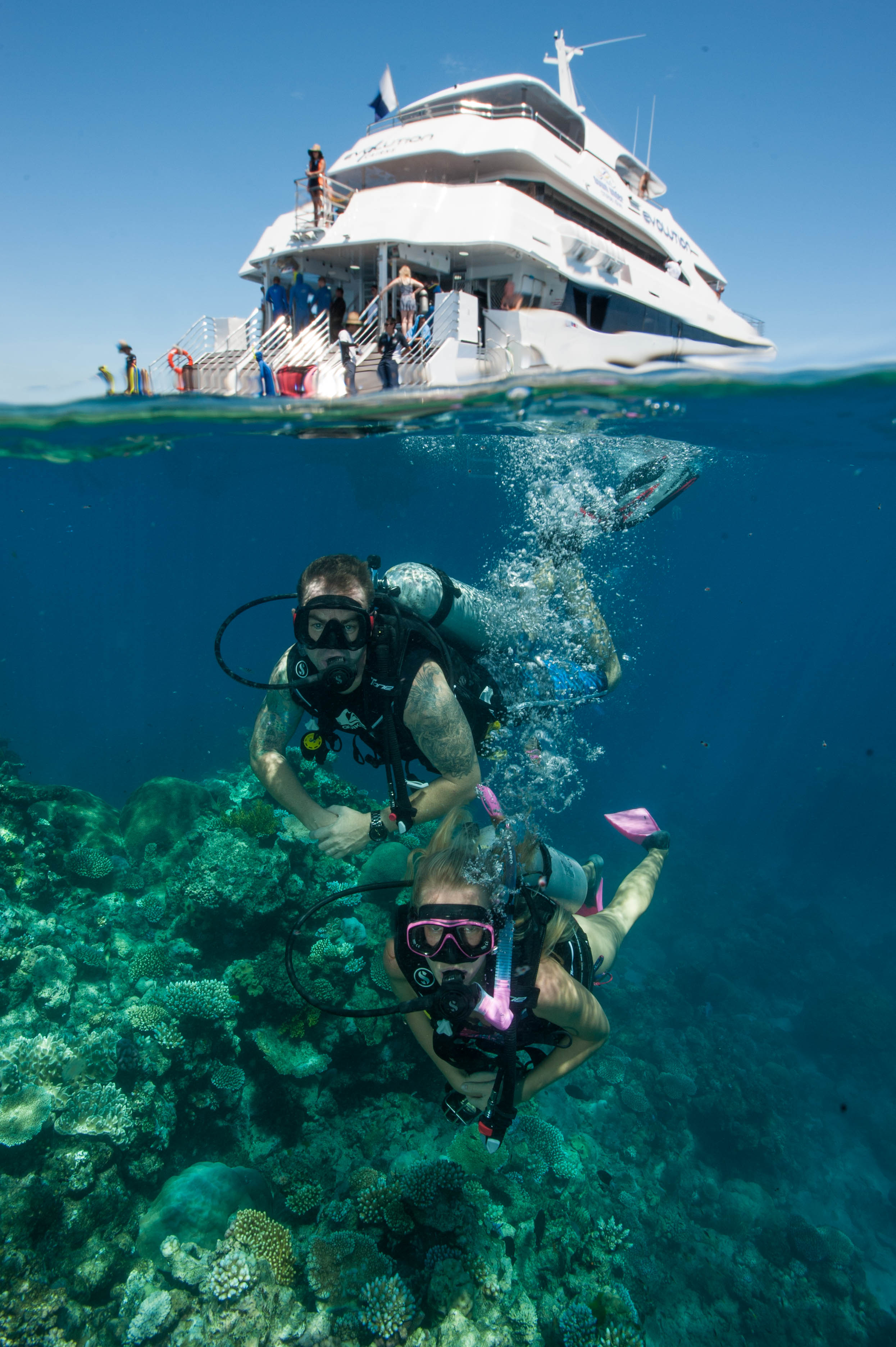 Down Under Cruise and Dive - Tourism TAS