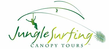 Jungle Surfing Canopy Tours and Jungle Adventures Nightwalks - Tourism TAS