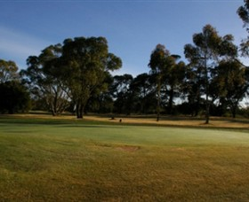 Winchelsea Golf Club - Tourism TAS