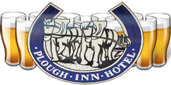 Plough Inn Hotel - Tourism TAS