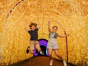 Christmas Lights Spectacular New Year's Eve at Hunter Valley Gardens - Tourism TAS