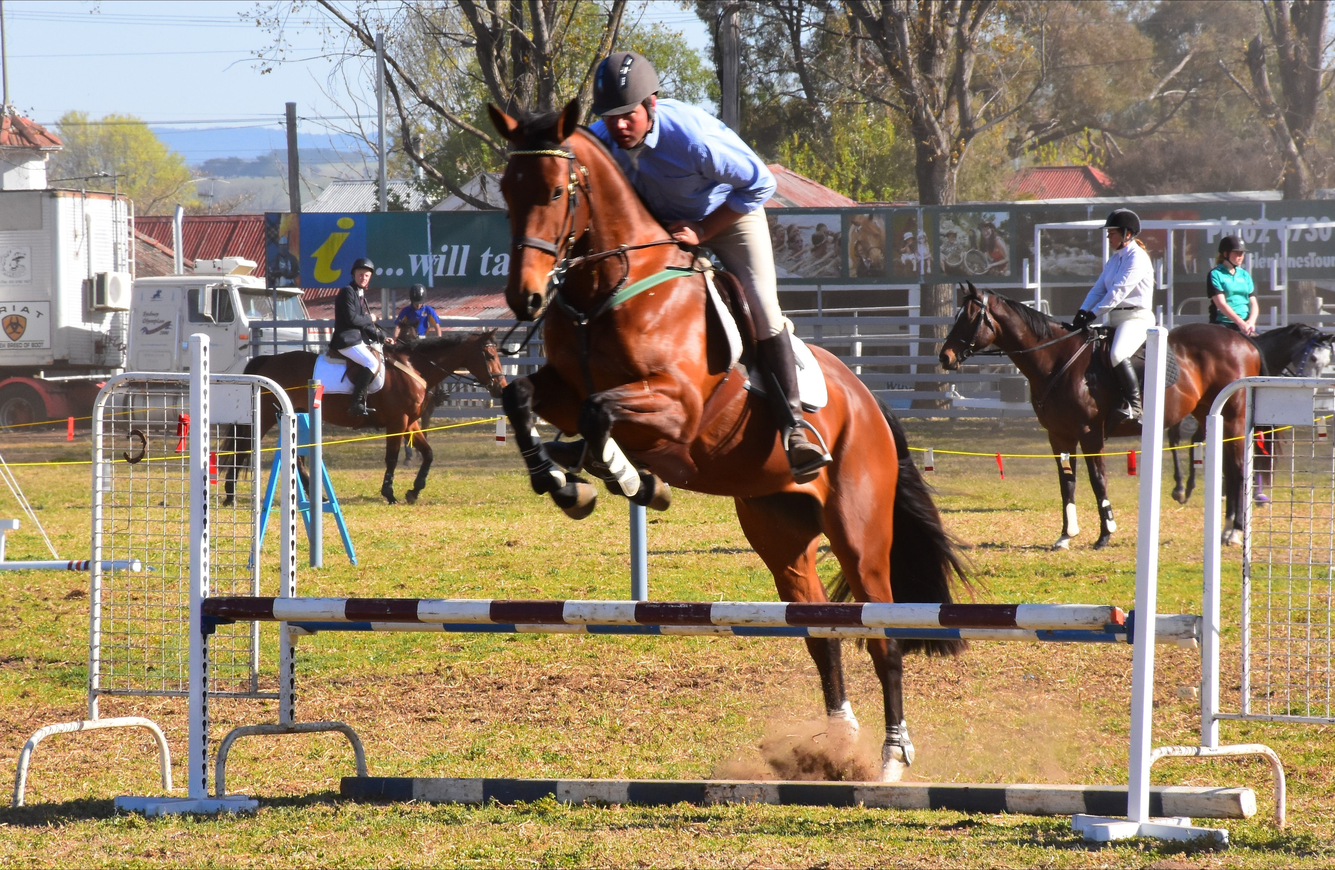 Glen Innes Pastoral and Agricultural Show - Tourism TAS