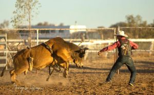 Walgett Charity Bushman's Carnival Rodeo and Campdraft - Tourism TAS