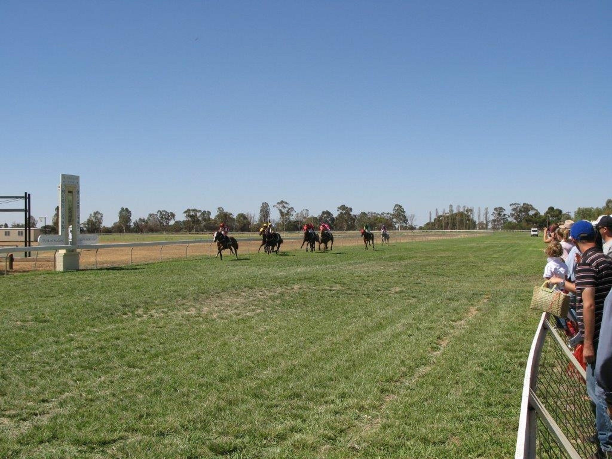 Balranald Races -Derby Day - Tourism TAS