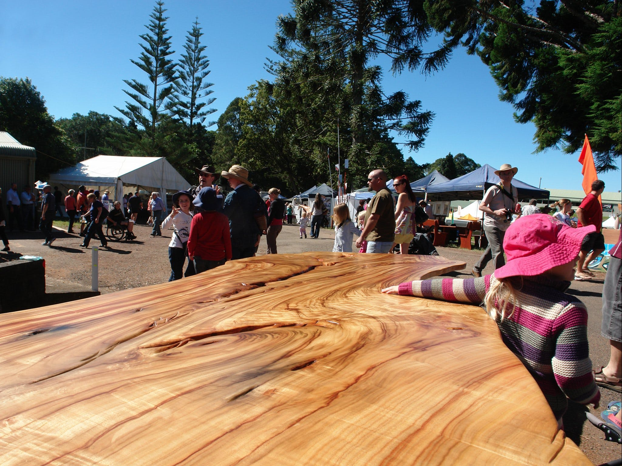 Maleny Wood Expo From Seed to Fine Furniture - Tourism TAS