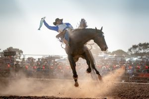Rodeo by the Sea - Streaky Bay - Tourism TAS