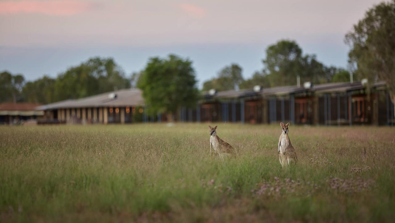 Wildman Wilderness Lodge - Tourism TAS