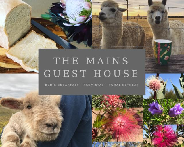 The Mains Guest House - Tourism TAS