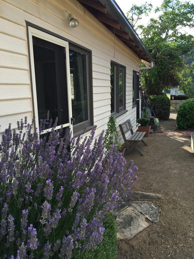 Walnut Cottage - Tourism TAS
